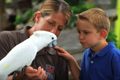 Six Flags Safari Bird; Sundance Vacations