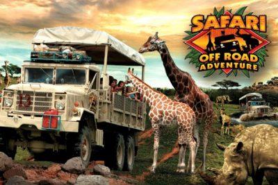 Six Flags Safari; Sundance Vacations